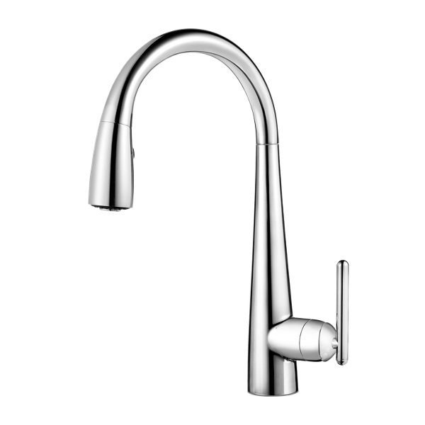 Lita 1-Handle Pull-Down Kitchen Faucet